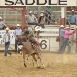 Video: Saddle bronc highlights from San Benito Rodeo