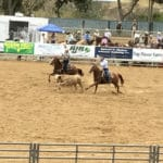 Applications available for return of Horse Show Parade