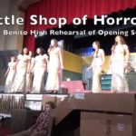 Video: Opening song performed in 'Little Shop' at SBHS