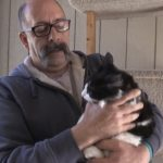 Pet of the Week: Kittens from feral family adapt well