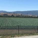 Rivas' Farmworker Housing bill gains key committee approval